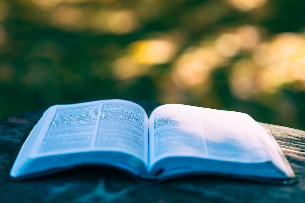 Vivienda diccionario